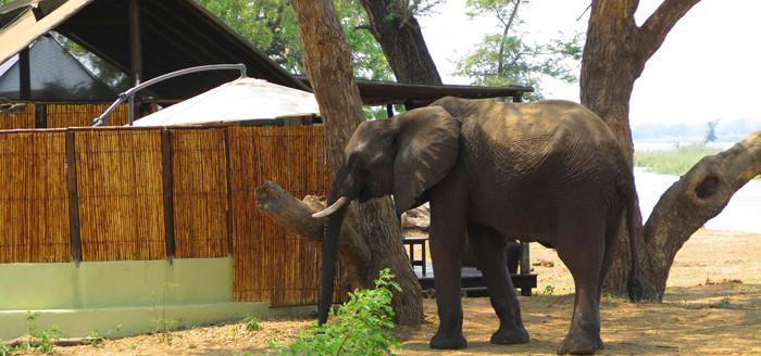 Educational-okt-266_Zambia